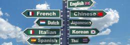 La traduction des expressions et locutions figurées : voyage au pays des images